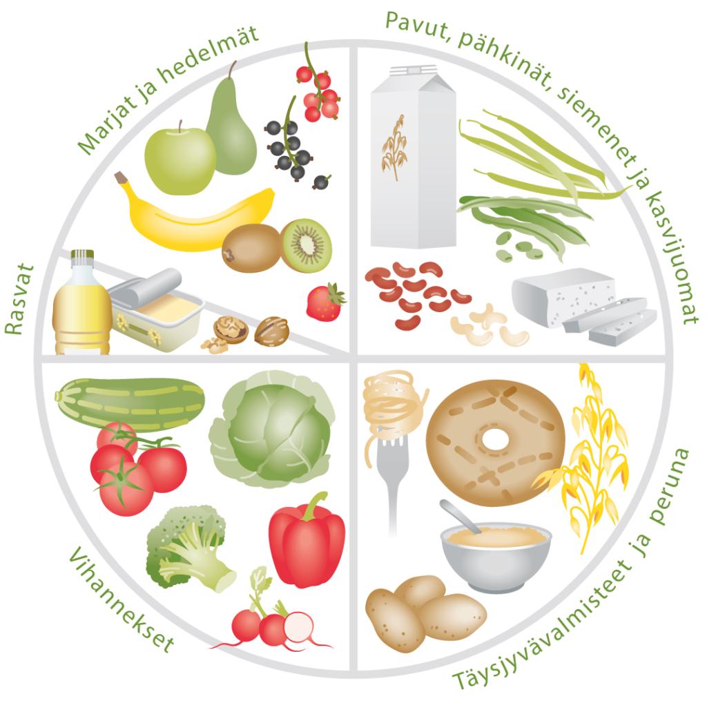 Vegaanin ruokaympyrä. Ruokavaliosta nejännes pitäisi koostua pavuista, pähkinöistä ja siemenistä, neljännes viljatuotteista ja neljännes kasviksista ja hedelmistä. Lisäksi ruokaöljyä ja muita rasvoja.